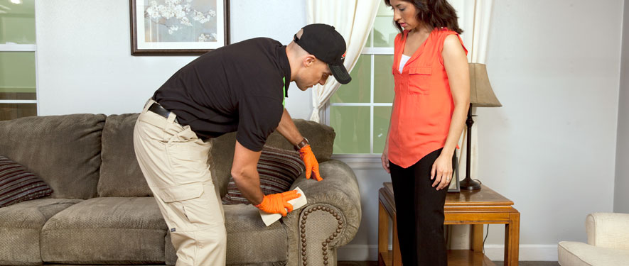 Westerly, RI carpet upholstery cleaning